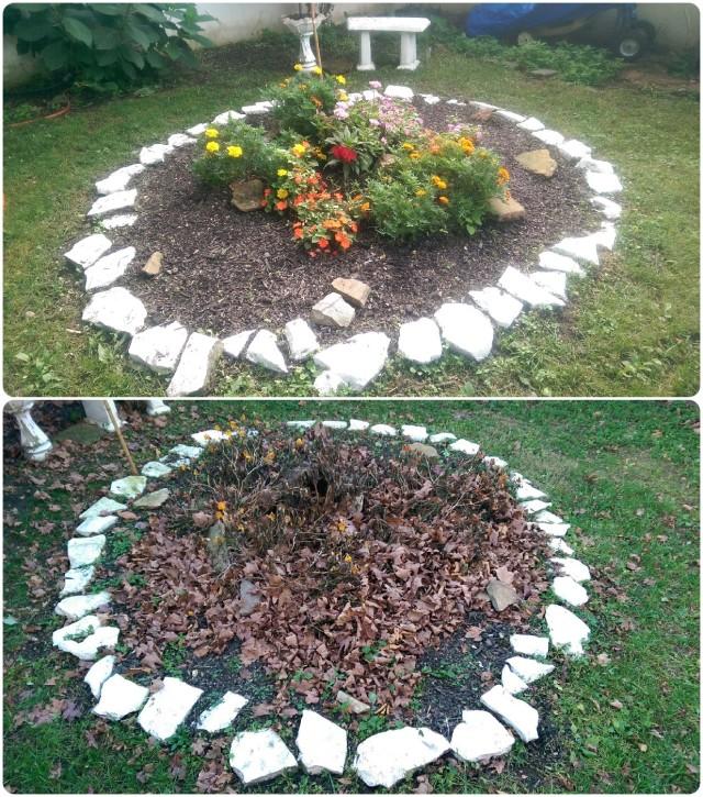 garden_before_after