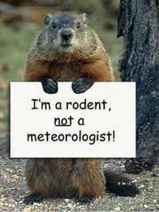 Groundhog-Day-Meme-3